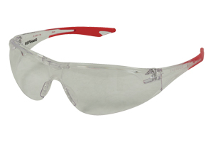 Champion  Ansi Rated Ballistic Eye Protection - Click to see Larger Image
